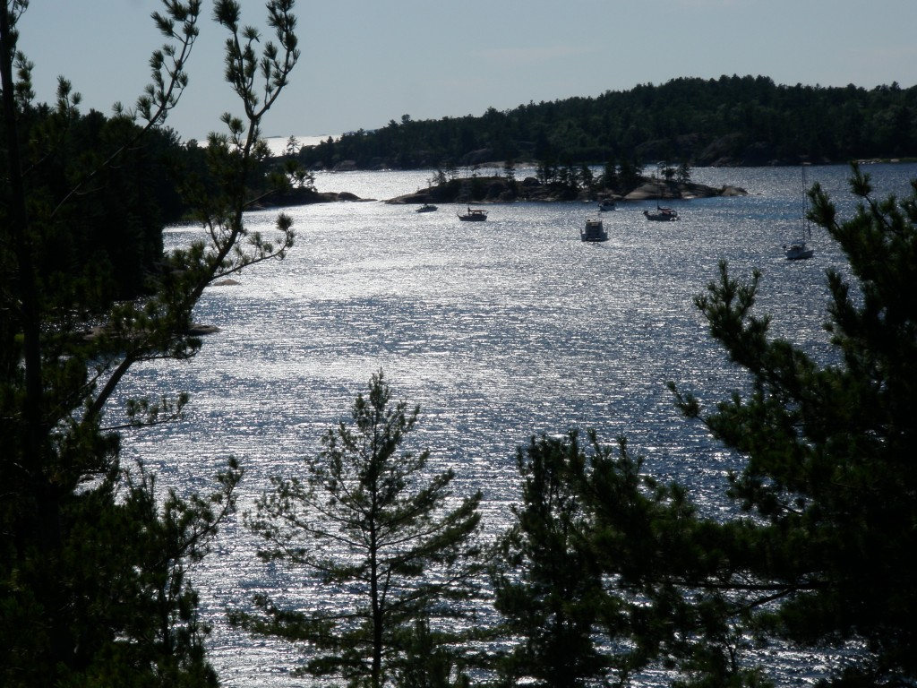 A few boats at anchor in Beardrop Harbour.