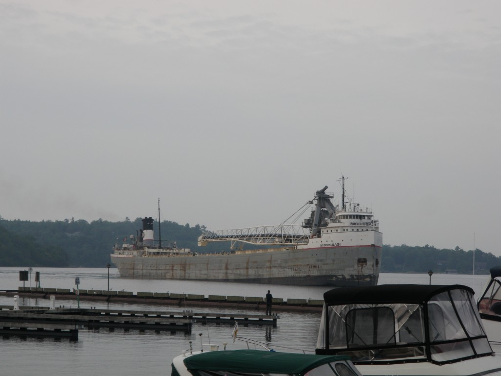 From wildlife to industrial life - this has been the only lake freighter we have sen so far.