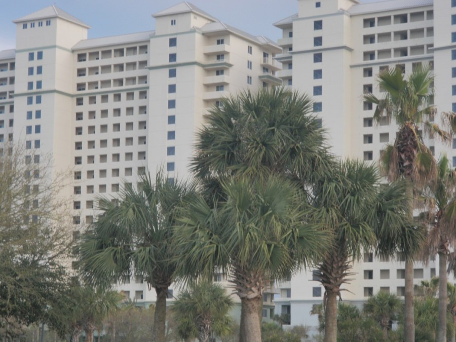 Finally, the palm trees; this is the Gulf Shores resort where we stayed with our cruising friends John and Marsha Belford of Gravenhurst, Ontario.
