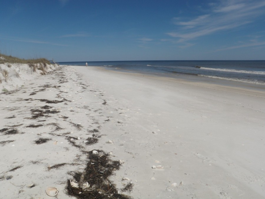 On the beach of Dog Island, at the end of the Gulf Intra-coastal Waterway; the Captain is in the distance contemplating the next day's open water journey across the Gulf of Mexico.