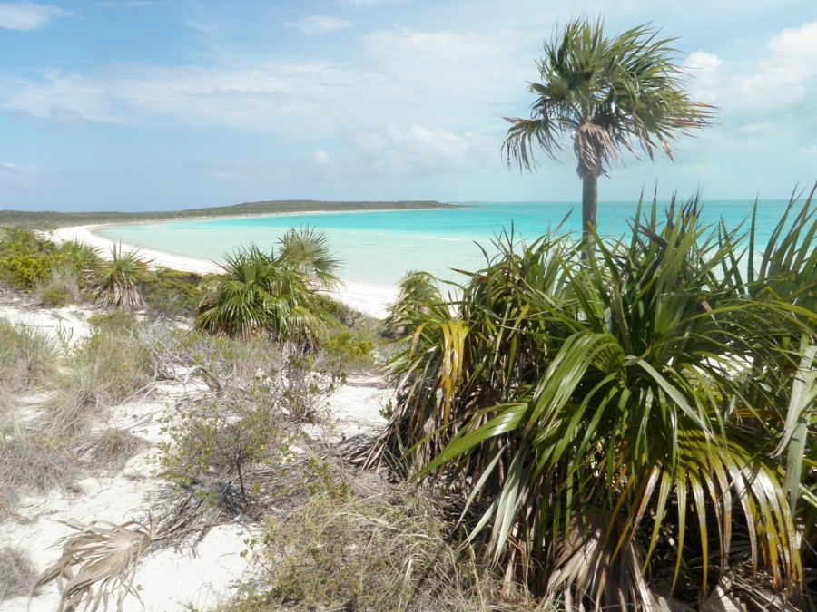 The view from the hill at White Point, Great Guana Cay.