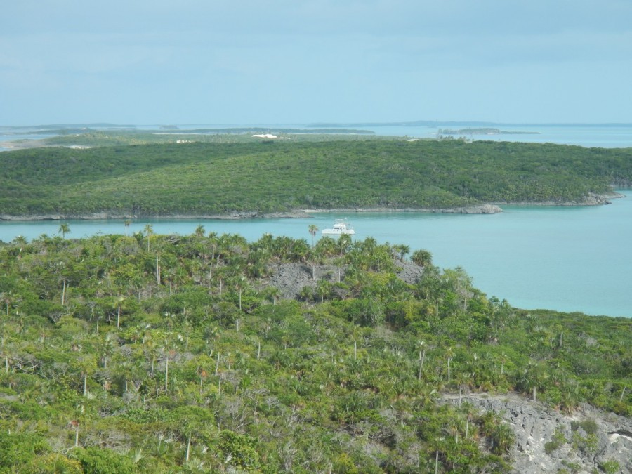 The view from Perry Peak, on Lee Stocking Island, and highest point in the Exumas.....all of 123 feet.