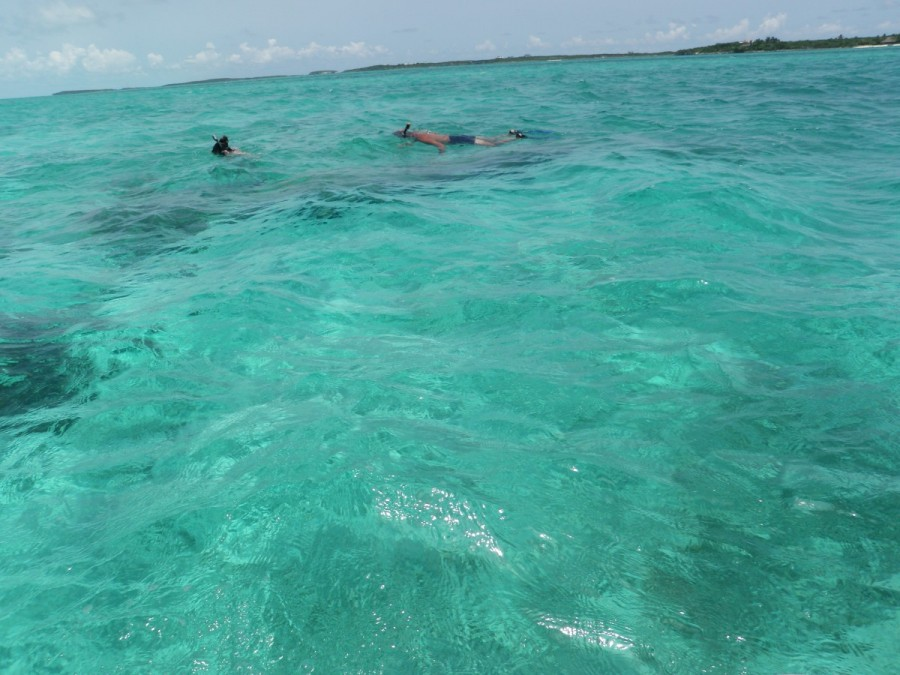 Snorkeling over the remains of a sunken plane; there are many to be found in the Exumas, perhaps a legacy from the 80's, when the Exumas were very popular with drug smugglers, and their flyboys sampled too much of the product.
