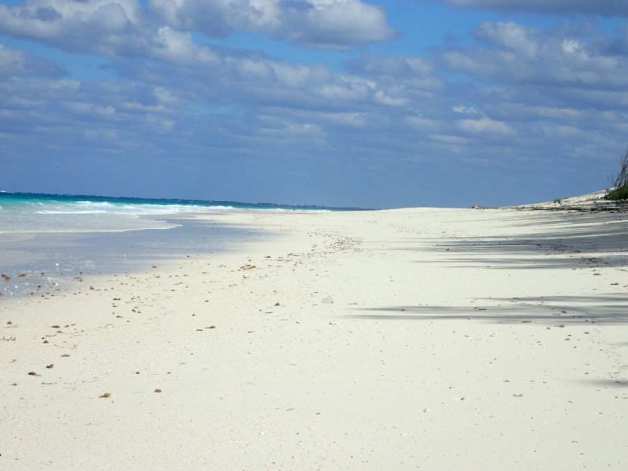 The broad expanse of beach at Great Guana Cay, which goes on for miles, with only a few seaside houses along the way