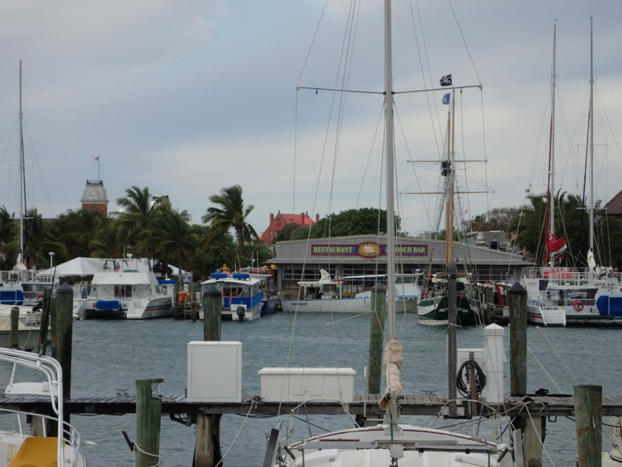 In Key West we were fortunate to get a slip in the heart of the downtown harbour area; it was a lively place, right in the centre of the action.