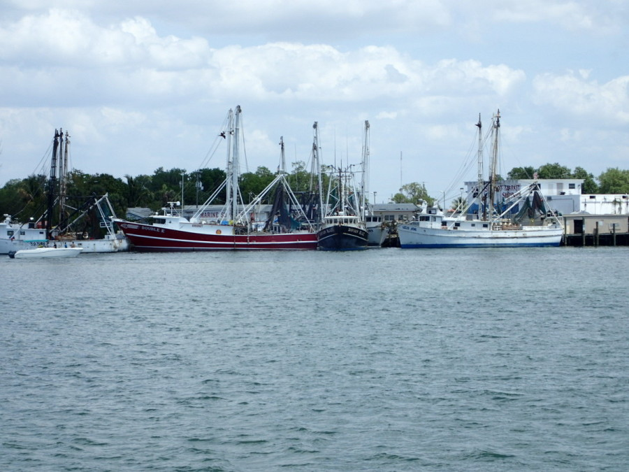 In Ft. Myers Beach we shared the harbour with the shrimp fleet.