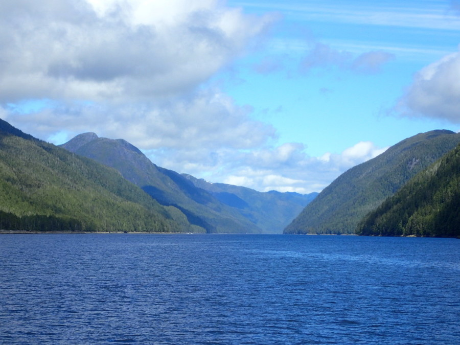 Grenville Channel is sometimes referred to as 'the ditch, because of it's length (50 miles) and narrowness (less than 1500 feet at it's narroest point); it's the last section of the Inside Passage before reaching the more open waters south of Prince Rupert.