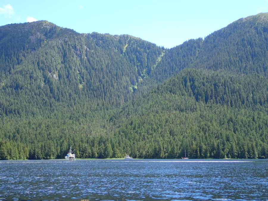 Lowe Inlet, off Grenville Channel, is our second favourite anchorage so far beacuse it is open enough to offer great views of the surroundng valley, but is still well protected, and.....