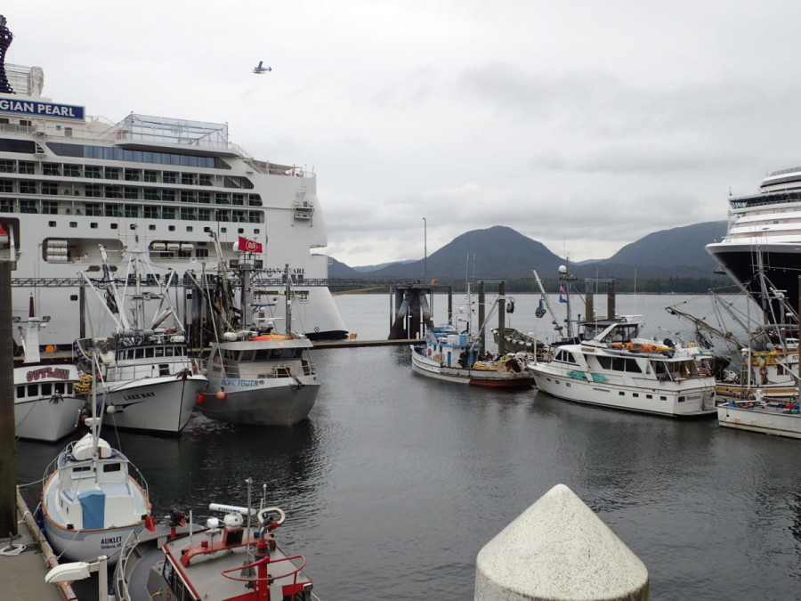Ketchikan, about 100 miles from Prince Rupert, was our first stop in Alaska; fishing boats, pleasures cruisers, cruise ships, and many buzzing seaplanes reflect the hectic activity in the harbour.