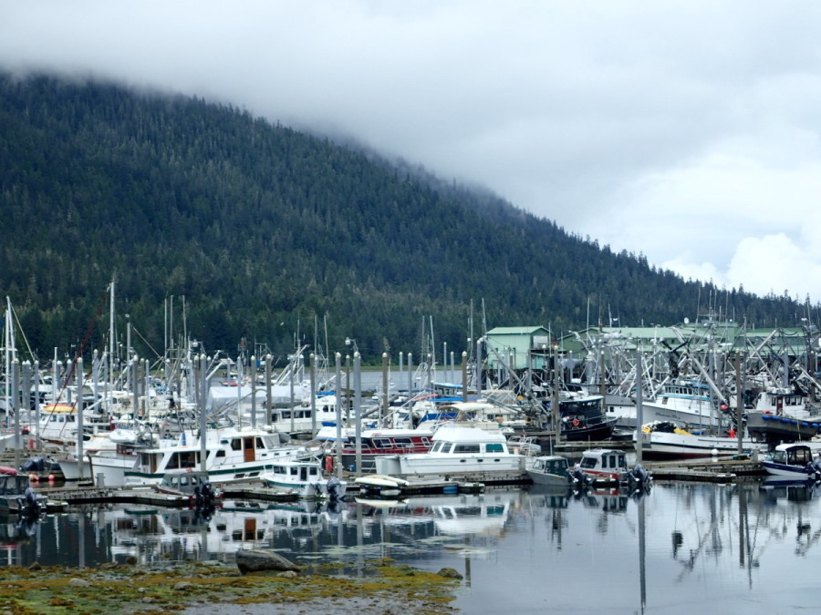 His Idea moored among a fleet of fishing boats in Petersburg harbour; this community, founded by Norwegian immigrants in the late 1800's, receives no large crusie ships like Ketchikan and Juneau, and retains its small fishing village feel.