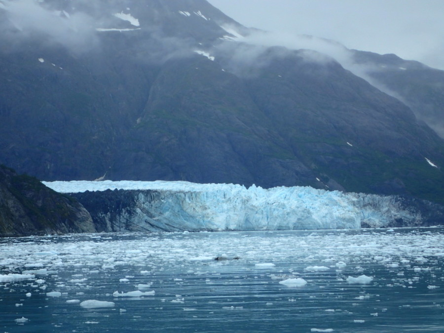 Margerie Glacier, where we could only get within a mile due to the ever moving pack ice......